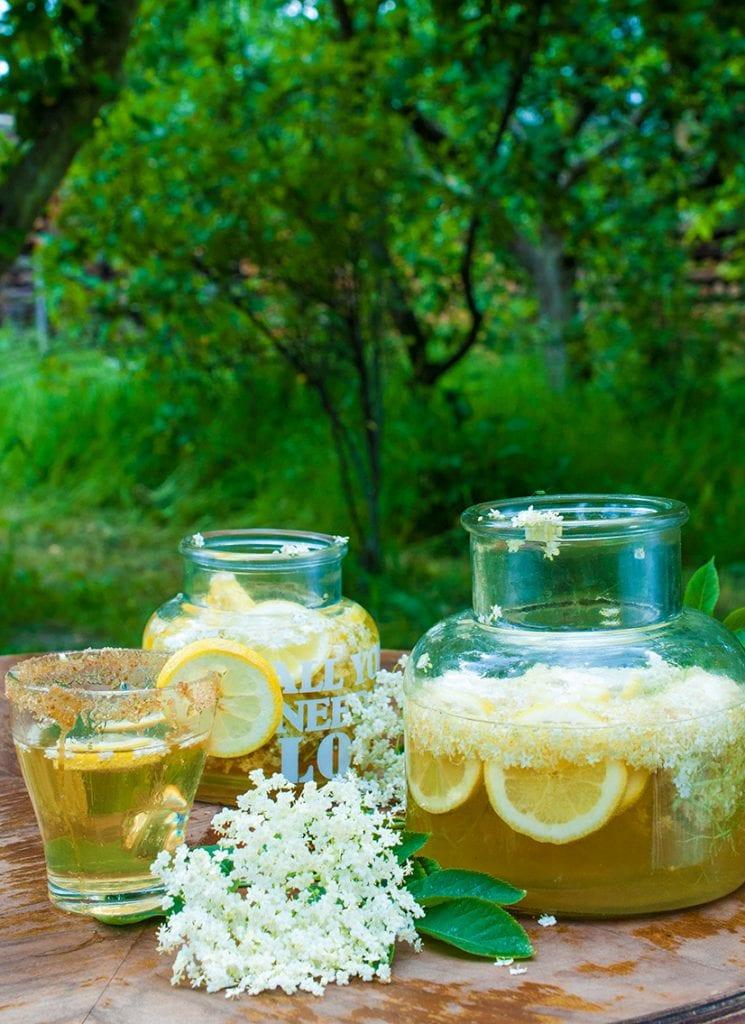 šumivý bazový nápoj recept