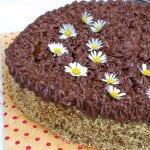 orechova torta recept