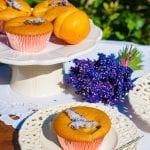 levanduľové muffiny recept