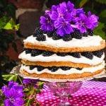 torta s černicami a mascarpone